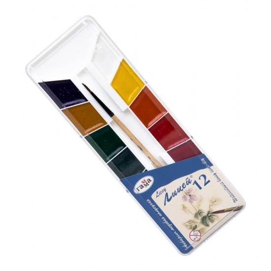 Boya akvarel 212066 12 rəng fırçalı